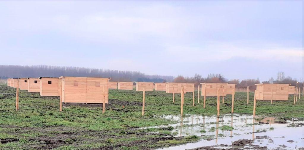 abris doubles en bois mélèze sur parcelles de jardins partagés