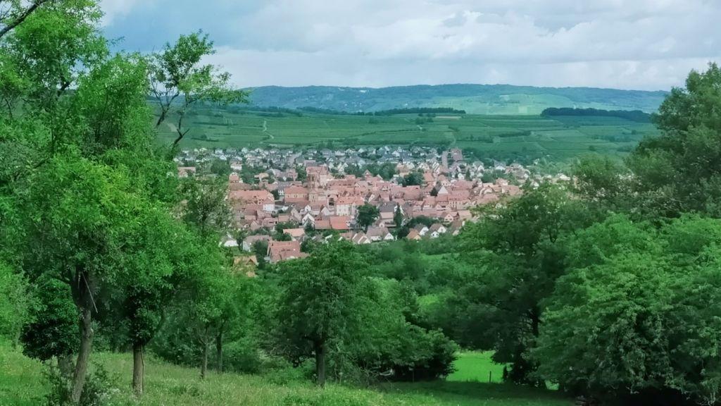 paysage plateau alsace